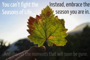 Leaf, green, Season